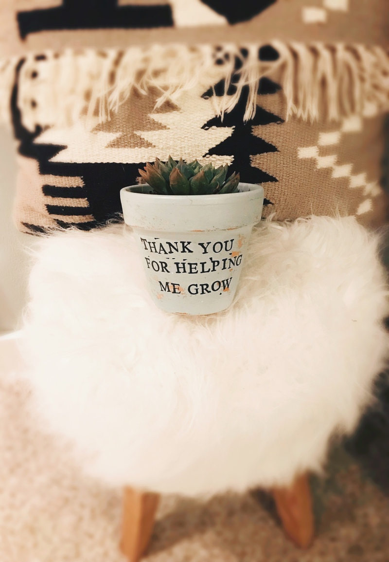 DIY White Washed Potted Succulent-Teacher Gift